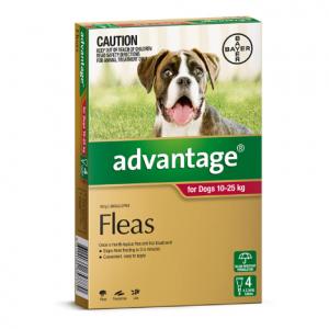 Advantage Flea Treatment For Dogs 10kg - 25kg 4 pack