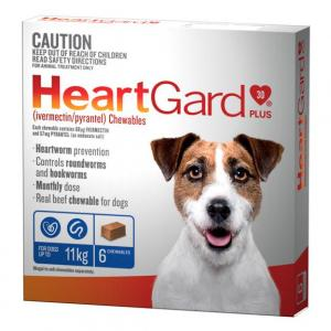 Heartgard  Plus - Worming Treatment For Small Dogs <11kg 6 pack