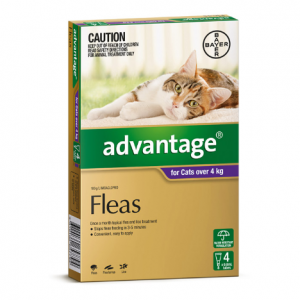 Advantage Flea Treatment For Cats 4kg+ 4 pack