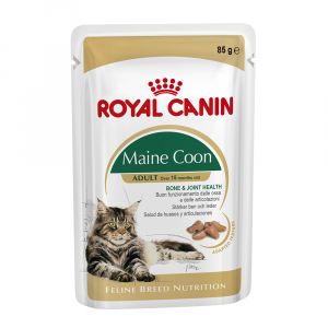 Royal Canin  Adult Maine Coon Wet Cat Food In Gravy - 85g