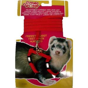 Living World  Ferret Harness And Lead Set
