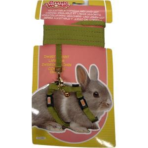 Living World  Dwarf Rabbit Harness And Lead Set