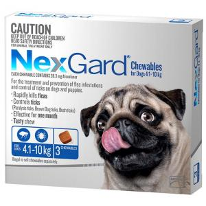 Nexgard - Flea and Tick Treatment for Small Dogs 4.1kg - 10kg