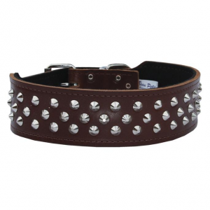 BEAU PETS Dog Collar Staffy/bull Terrier Leather With Studs 50mm 60cm