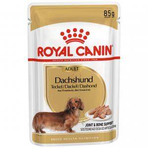 Royal Canin  Dachshund Adult Wet Dog Food 85g
