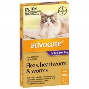 Advocate Flea And Worm Treatment For Cats 4kg+ 1 pack