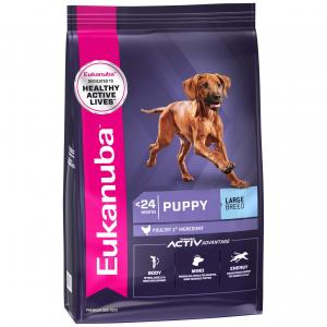 Eukanuba  Large Breed Puppy Chicken Dry Dog Food