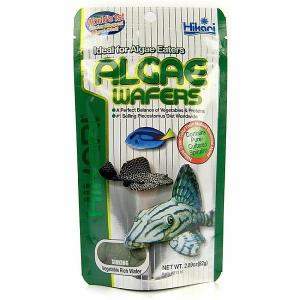 Hikari  Algae Wafers Fish Food