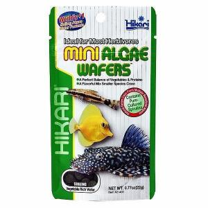 Hikari  Mini Algae Wafers Fish Food